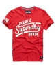 Superdry men's t-shirt Z-24
