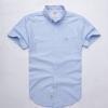 Mens shirt Z-249